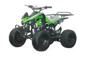 COOLSTER ATV 125cc SPORT GREEN THIS PRICE IS LOCAL PICK UP ONLY