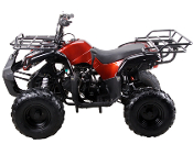 COOLSTER ATV-125cc (RED) THIS PRICE LOCAL PICK UP ONLY